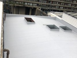 Single Ply Roof, London